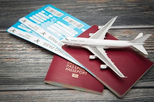 International Tour Operator